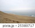 曇りの日の鳥取砂丘 25380717