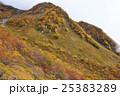 北アルプス 山 山岳の写真 25383289