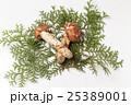 国産の松茸 25389001