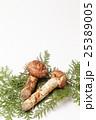 国産の松茸 25389005