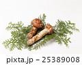 国産の松茸 25389008