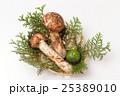 国産の松茸とすだちのかご盛 25389010