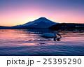 夕暮の富士山と白鳥 25395290