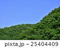 森と空と 25404409