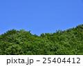 森と空と 25404412