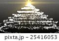 雪の結晶 ツリー クリスマスツリー 25416053