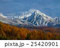 八ヶ岳関節と唐松の黄葉 25420901