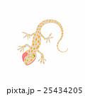 ヤモリ ベクター 動物のイラスト 25434205