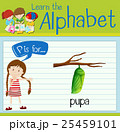 Flashcard letter P is for pupa 25459101