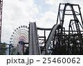 25460062