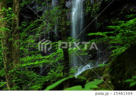スッカン沢の素簾の滝 25461504