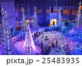 カレッタ汐留 イルミネーション ライトアップの写真 25483935