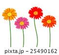 お花 フラワー 咲く花のイラスト 25490162