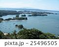 松島 25496505
