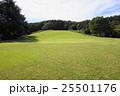 緑の風景 25501176