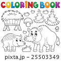 Coloring book with wild pigs theme 1 25503349