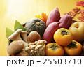 秋の食材 イメージ 25503710
