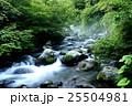 清里 清流 自然の写真 25504981
