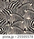 Zebra seamless pattern. 25505578