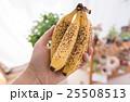バナナ 25508513