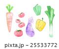 おいしい野菜 25533772