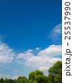 夏空と公園 25537990