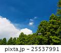 夏空と公園 25537991