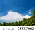 夏空と公園 25537992