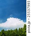 夏空と公園 25537993