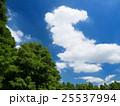 夏空と公園 25537994