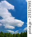 夏空と公園 25537995