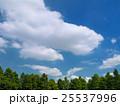 夏空と公園 25537996
