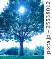 夏空と公園 25538012