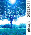 夏空と公園 25538024