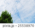 秋の空 25538970
