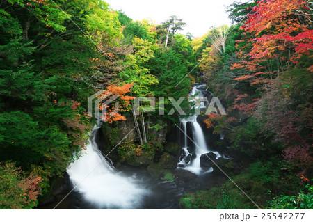竜頭の滝 25542277