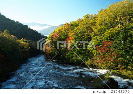 竜頭の滝 25542279