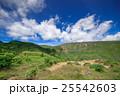 志賀高原 高原 夏の写真 25542603