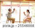 福祉 介護 グループホーム デイサービス デイケア 老人ホーム ボール遊び 運動 25546008