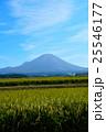 秋の大山 25546177