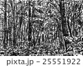白神山地 25551922