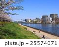 隅田川テラス 永代橋 桜並木の写真 25574071