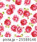 花 薔薇 ローズのイラスト 25589146