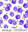 花 薔薇 ローズのイラスト 25589147