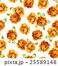 花 薔薇 ローズのイラスト 25589148