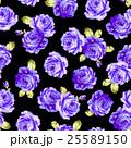 花 薔薇 ローズのイラスト 25589150