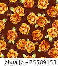 花 薔薇 ローズのイラスト 25589153