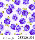 花 薔薇 ローズのイラスト 25589154