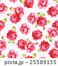 花 薔薇 ローズのイラスト 25589155