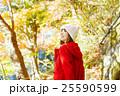 女性 紅葉 紅葉狩りの写真 25590599